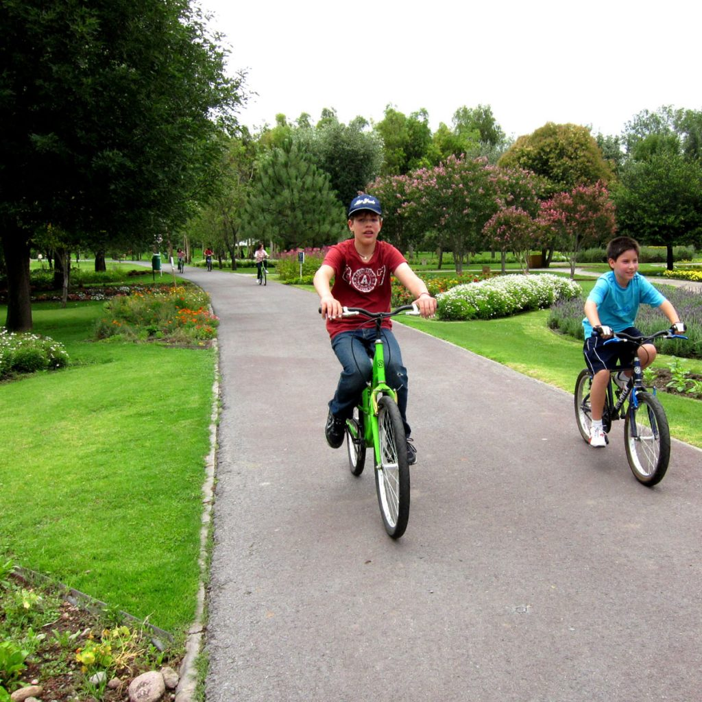 Paseos en bicicleta